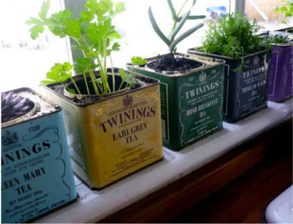 lovely window board decorated with herbs