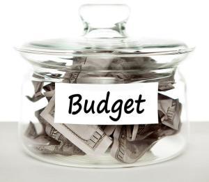Paddocks Budget